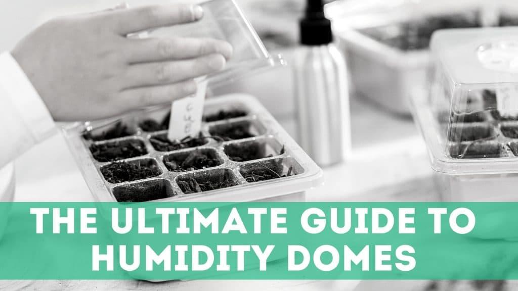 humidity domes