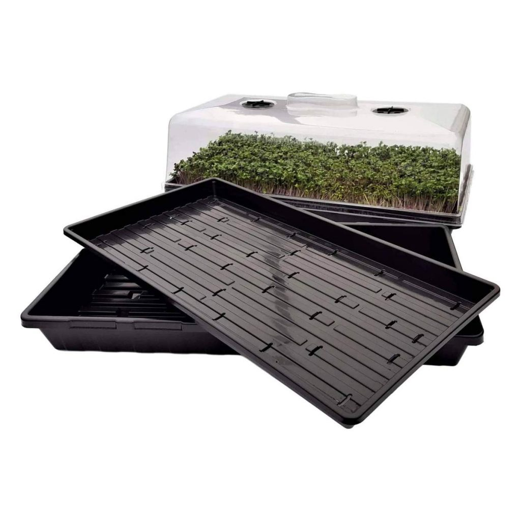 seed starting kit with dome