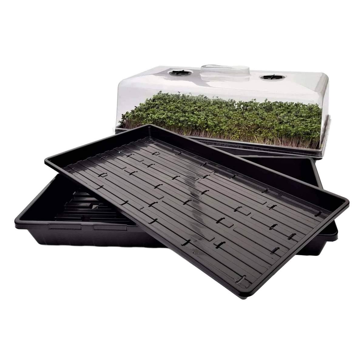 Bootstrap Farmer Microgreen Trays