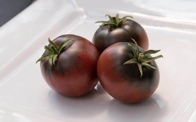 cherokee purple