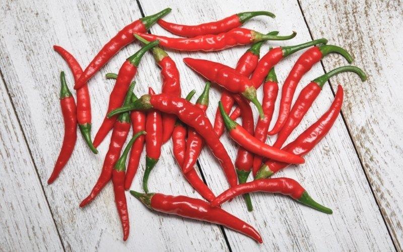dragon cayenne pepper