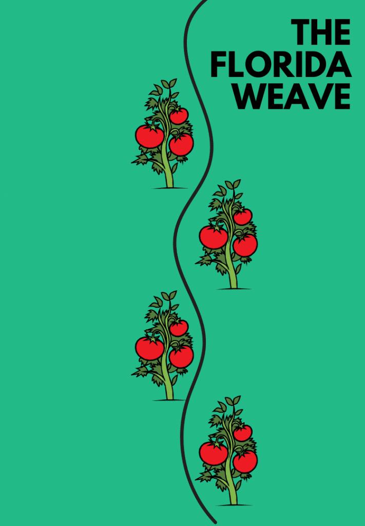 florida weave example