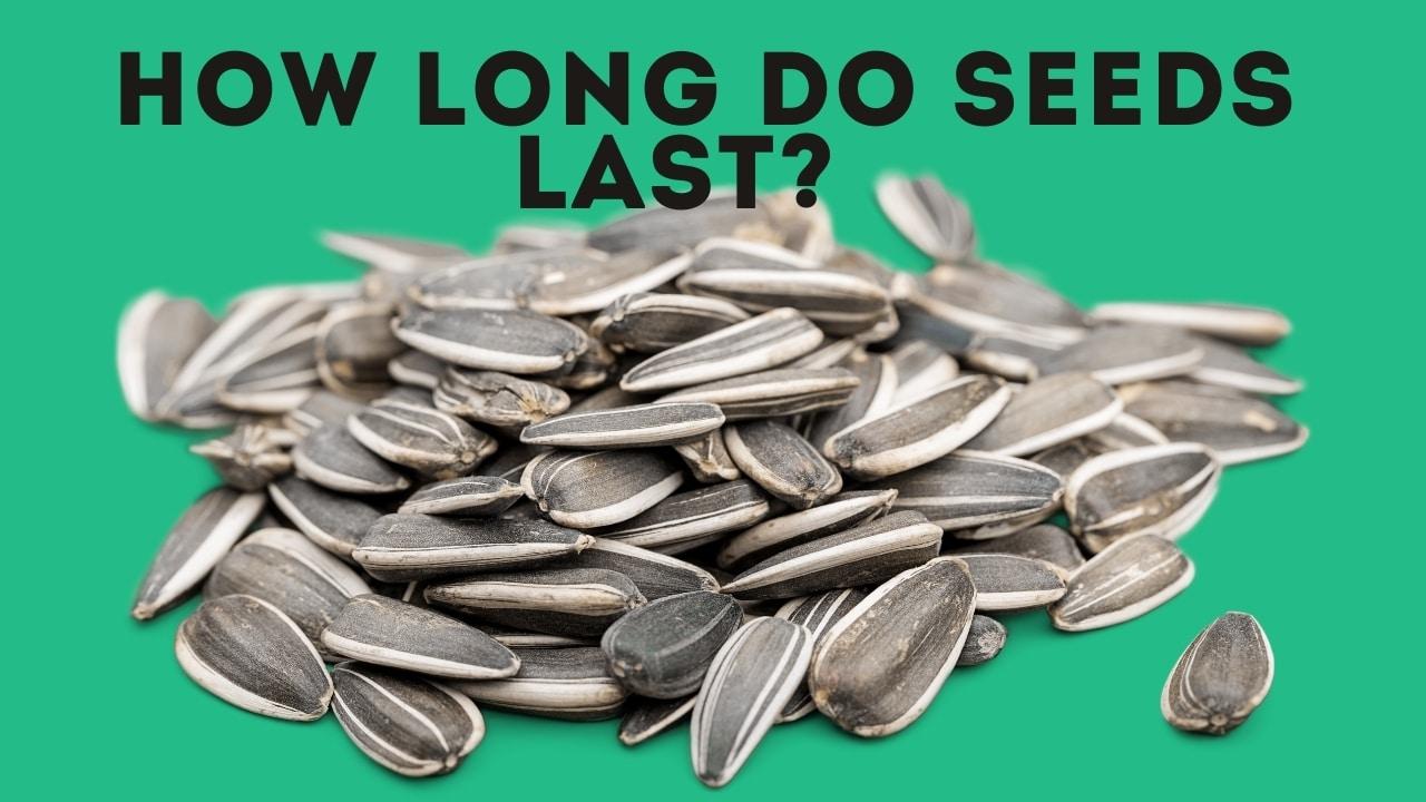 How Long Do Seeds Last? [+ Free Seed Viability Chart]